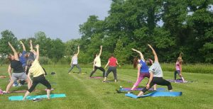 Participants in Yoga in the Park at Shor Park. Julyl 2015.